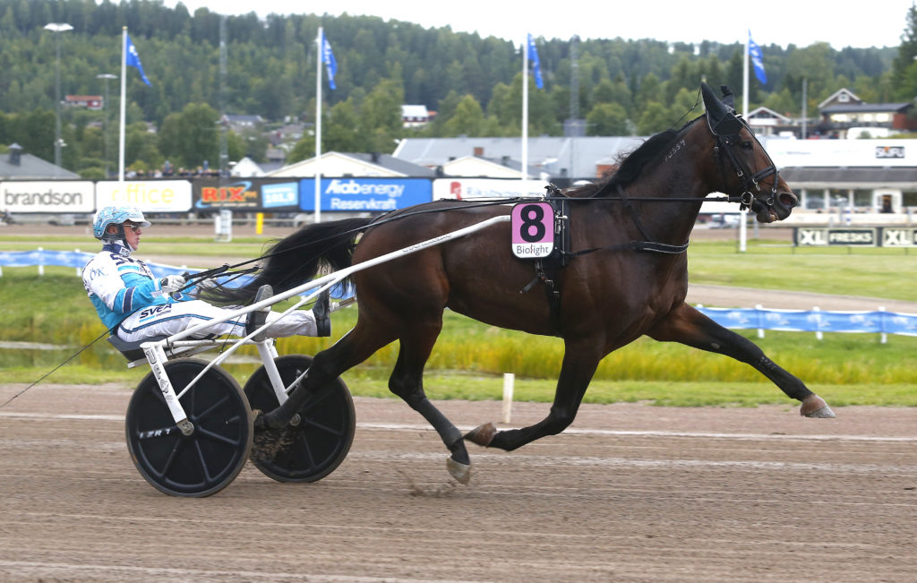 Foto: Hanold/Foto-Mike Bergsåker 20170826  Propulsion med Örjan Kihlström